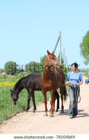 Woman leading brown horse and foal on countryside road - stock photo
