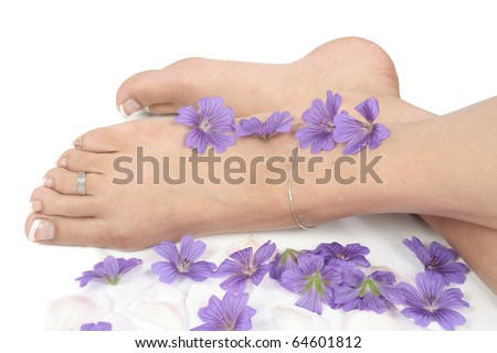 Woman  legs and flowers  over white background - stock photo
