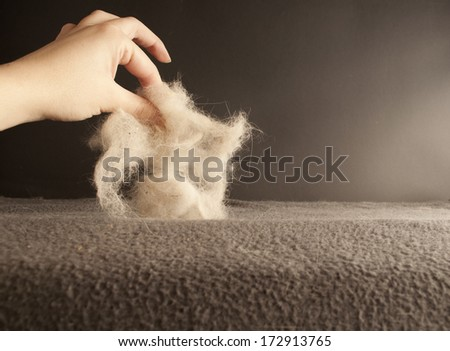 Woman lifting a pile of pet hair - stock photo