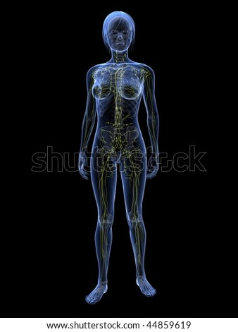 woman - lymphatic system