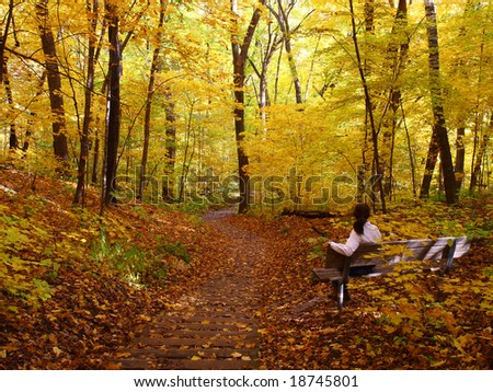Woman on the bench in the autumn forest