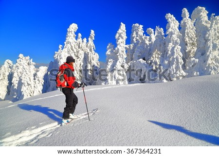 Woman on touring skis climbing a sunny mountain slope in deep snow  - stock photo