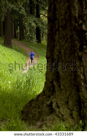 Woman out trail running - stock photo