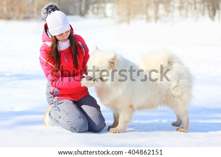 Woman owner feeding white Samoyed dog with hands in winter park - stock photo