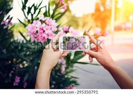 Woman photographs flowers on smartphone. girl holding a smart phone on a background of flowers. flare light, cross process.  - stock photo