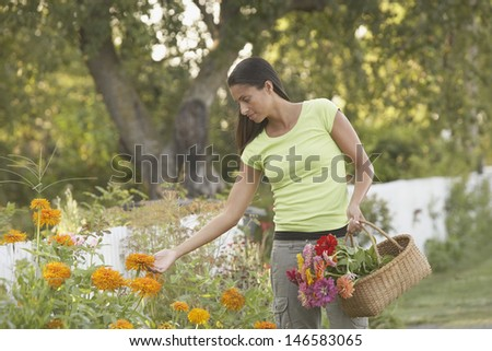 Woman picking flowers with basket