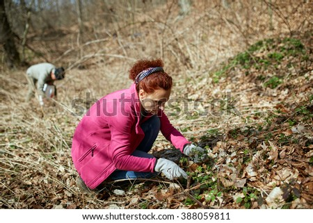 Woman picking young fresh nettles from the forest in the spring - stock photo