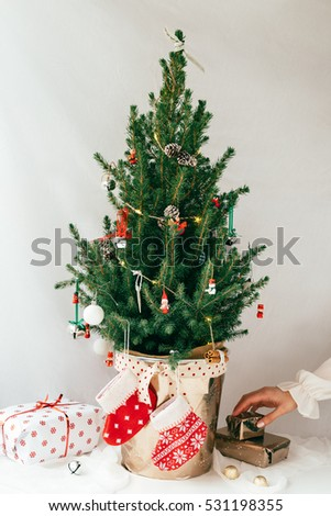 woman placing wrapped gifts underneath real miniature christmas tree in festive pot against white background - Real Mini Christmas Tree