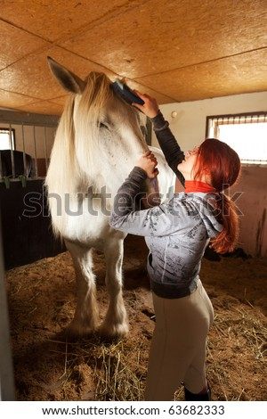 Woman prepare horse for riding, making braid in stable