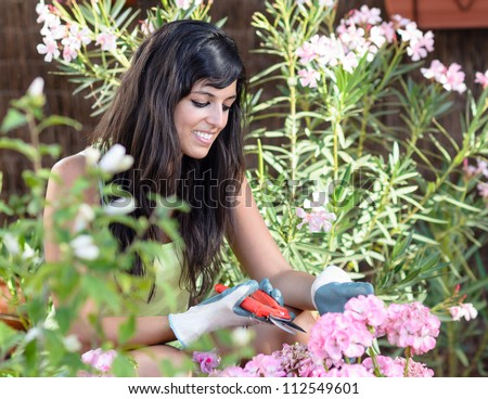 Woman pruning flowers and plants. Happy brunette caucasian female gardening outdoor. - stock photo
