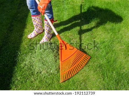 Woman raking freshly cut grass in the garden - stock photo