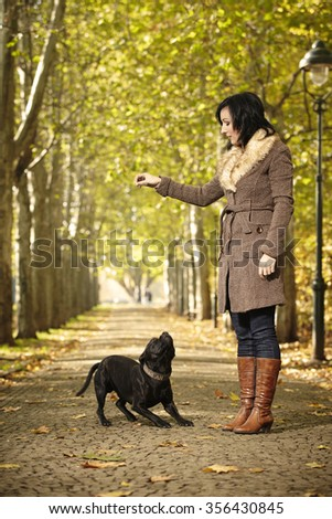 Woman rewarding her dog in autumn alley