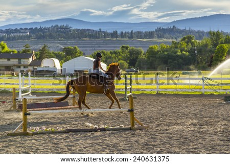 Woman Riding a Horse in Sunny Outdoor Ring - stock photo
