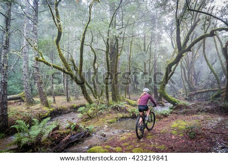 Woman riding mountain bike in forest near stream. - stock photo