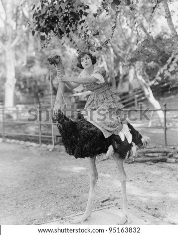 Woman riding ostrich - stock photo