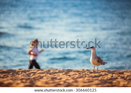 Woman running on the beach at the morning  - stock photo