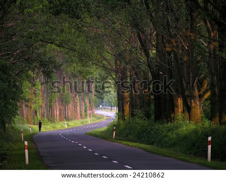 Woman runs along the alley of trees.