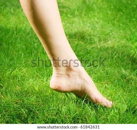 Woman's bare feet in green grass - stock photo