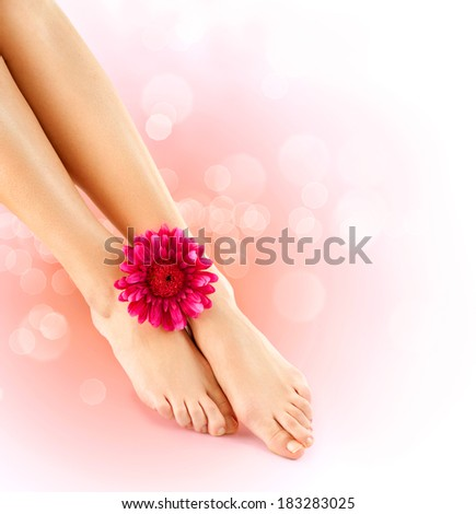 Woman's Feet isolated on white. Pedicure concept. Nails. Spa. Skincare. Depilation. Epilation. Legs and herbera flower  - stock photo