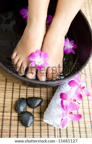 Woman's feet soaked in floral scented water in day spa