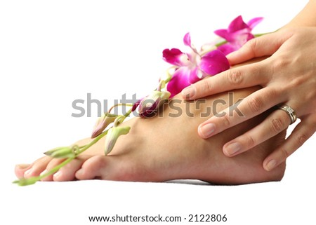 Woman's foot and hand on white with orchid flowers - stock photo
