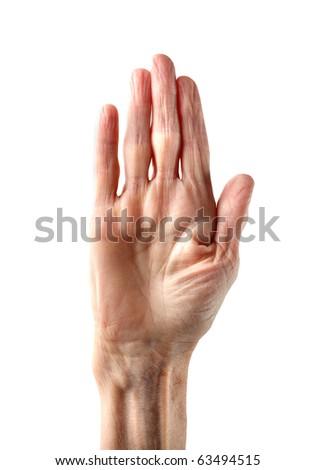 Woman's hand - stock photo