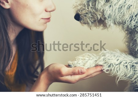 woman's hand and dog's paw - stock photo