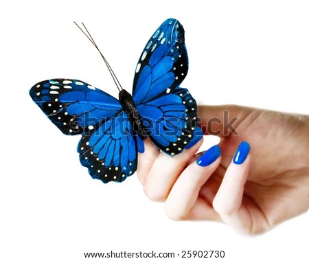 Woman's hand holding a butterfly - stock photo