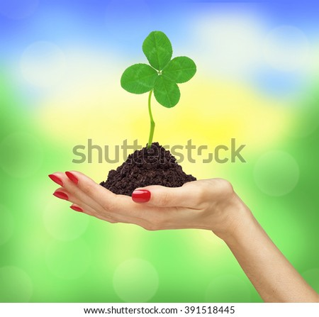 woman's hand holding a clover plant growing out of the ground - stock photo