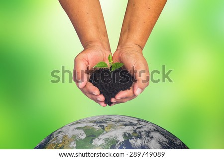 woman's hand holding little growing plant over the world  on blurred green nature backgrounds.safe the world concept.Elements of this image furnished by NASA. - stock photo