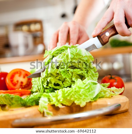 Woman's hands cutting lettuce, behind fresh vegetables. - stock photo