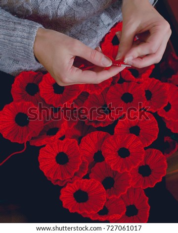 Womans Hands Knitting Poppies Charity Knitting Stock Photo Royalty