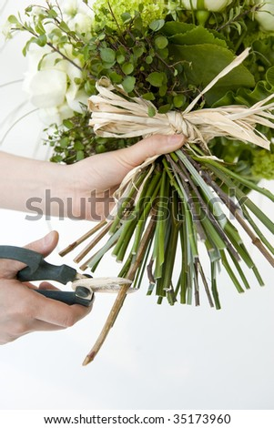 Woman's hands trying to cut a spray of rose bouquet - stock photo