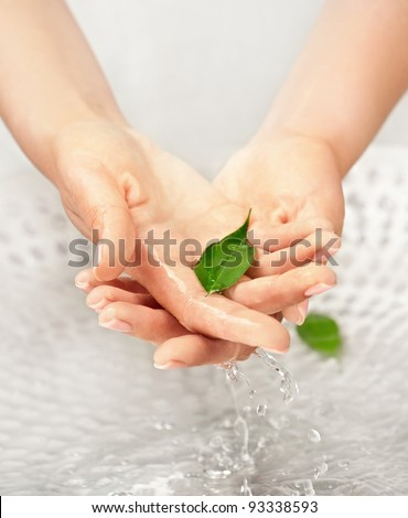 Woman's hands with green leaf in water above the sink - stock photo