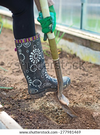 Woman's leg digging soil in greenhouse.