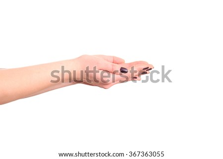 Woman's open hands on a white background. - stock photo