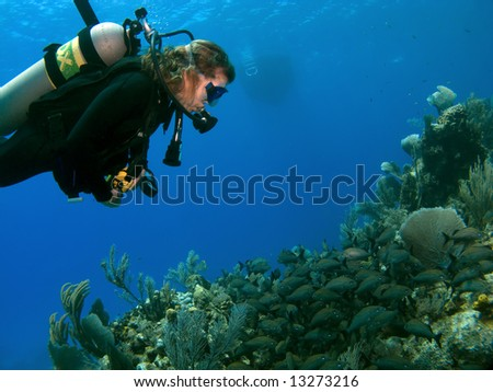 Woman Scuba Diver Looking at A school of Fish on a Cayman Island Reef with Boat in background