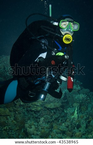 Woman scuba diver - night dive - stock photo