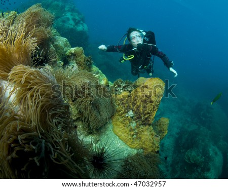 woman scuba diver swimming in clear blue water behind coral structure