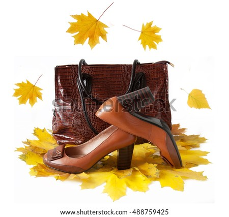 Woman shoes and bag isolated on white background with autumn leaves. Woman shoes collection sales concept