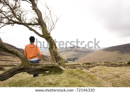 woman sitting on tree and watching fantastic landscape - stock photo