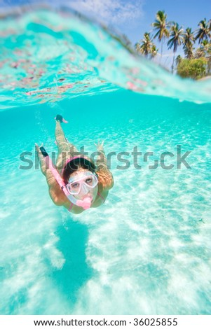woman snorkeling in clear tropical turquoise waters under over palm trees