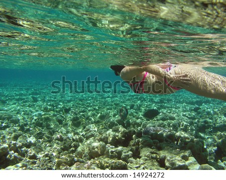 Woman snorkeling in Red sea - stock photo