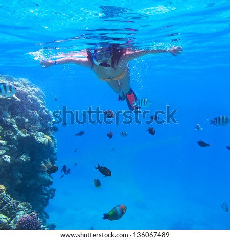 Woman snorkeling in Red Sea of Egypt - stock photo