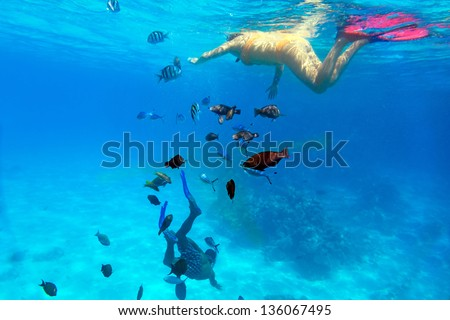 Woman snorkeling in Red Sea of Egypt