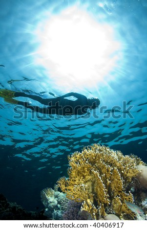 Woman snorkeling in sea - stock photo