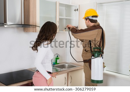 Woman Standing Near The Young Worker With Flashlight Spraying Pesticide On Shelf In Kitchen - stock photo