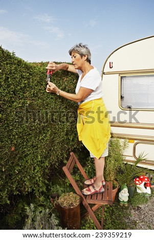 Woman Trimming Her Hedge - stock photo