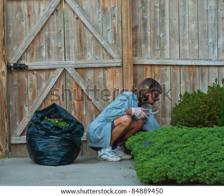 Woman trims her landscaping, and bags the trimmings. - stock photo