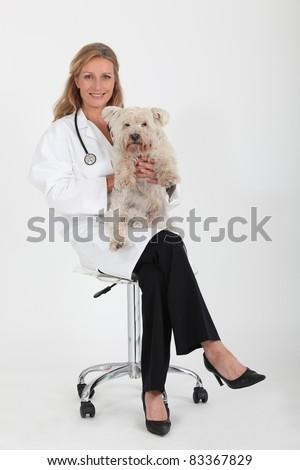 woman veterinarian holding dog - stock photo